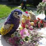 Flora-2011-conkurs