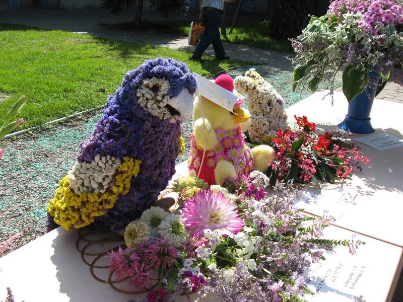 Выставка цветов в омске